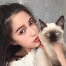 女生抱着猫猫爱心满满头像 抱着猫咪的女生头像可爱清新