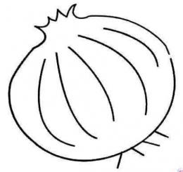 QQ画图红包洋葱画法教程