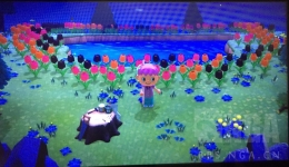 《集合啦!动物森友会》全花卉种类一览
