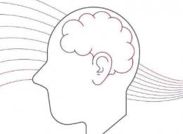 QQ画图红包大脑画法教程
