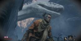 《只狼:影逝二度》第二条白蛇击杀方法攻略