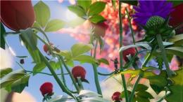 禁闭求生植物作用一览