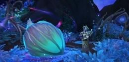 魔兽世界9.0祈愿蟋蟀宝箱位置一览