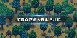 星露谷物语1.5头骨山洞层数一览