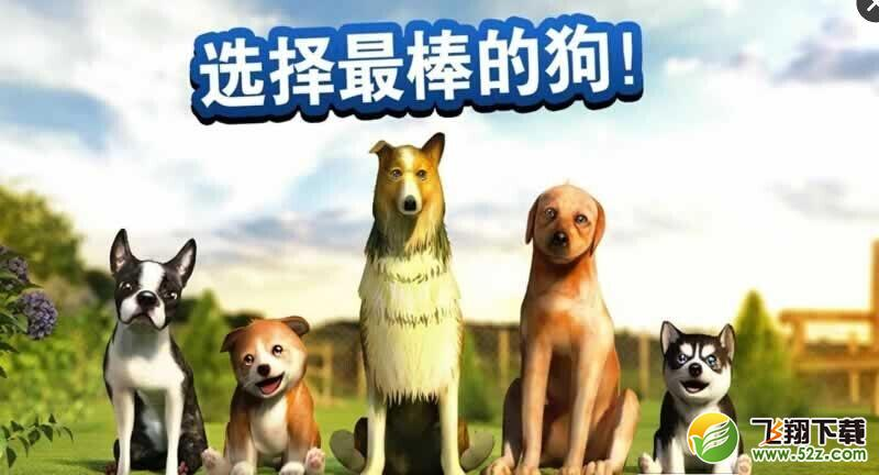 小狗模拟器无限金币版_小狗模拟器内购破解版