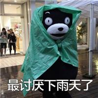 熊本熊下雨表情包图片