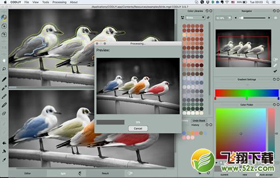 CODIJY Mac版V3.5.7 官方版_52z.com