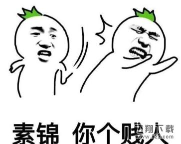 素锦太坏了微信恶搞表情包图片