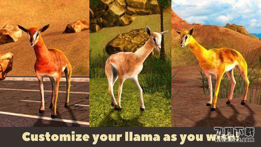 美洲驼野生动物模拟器3DV1.0 安卓版_52z.com