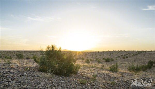 种树吗 官方吐槽大约在秋季  支付宝还附上了两张在沙漠当中茁壮成长