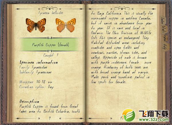 我的世界蝴蝶生态MOD
