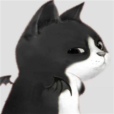 超可爱的情侣猫咪头像  我原本不是一个喜欢哭哭啼啼的人,但是自从