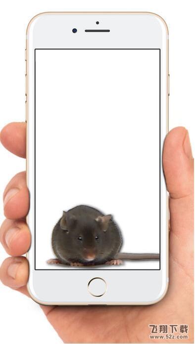 老鼠在手机屏幕上爬的软件叫什么_老鼠在手机上爬软件在哪下载