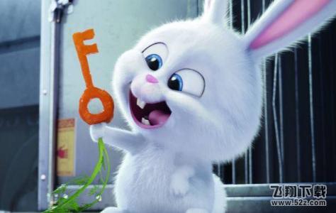 钥匙兔子桥心里测试怎么分析 用我兔子桥钥匙造句心理分析