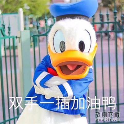 今天也要加油鸭表情包 (暂未上线)图片