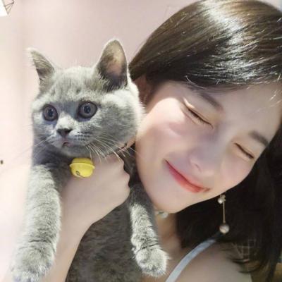 呆萌女生头像抱猫_抱着猫咪的女生可爱头像大全2018 漂亮女生抱猫咪合照头像2018高清