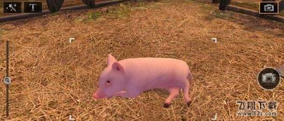 明日之后小猪购买方法介绍_52z.com