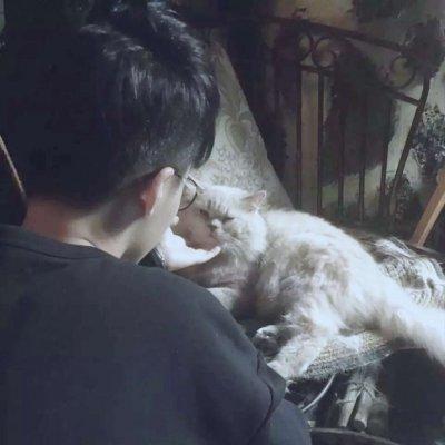 男生抱猫头像高清大全2019最新 好看的男生头像帅气有气质