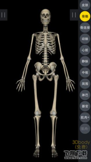 3DBody解剖V8.0.0 安卓版_52z.com