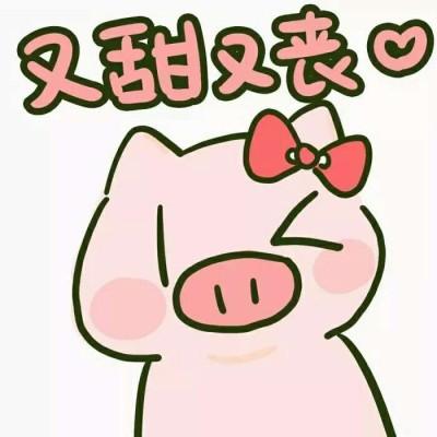 2019猪年卡通头像配文字 猪猪头像可爱高清大全图片