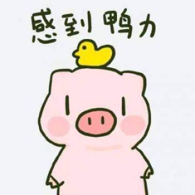 2019猪年卡通头像配文字 猪