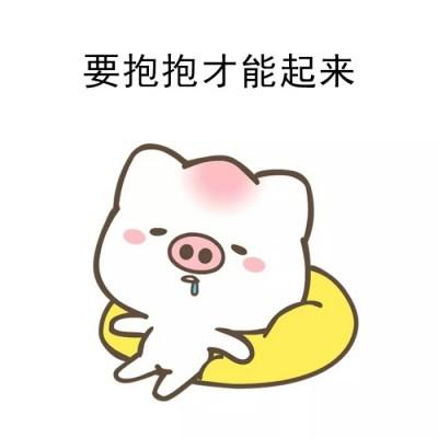 超萌可爱卡通猪头像2019最新 2019精选卡通猪头像呆萌高清无水印图片