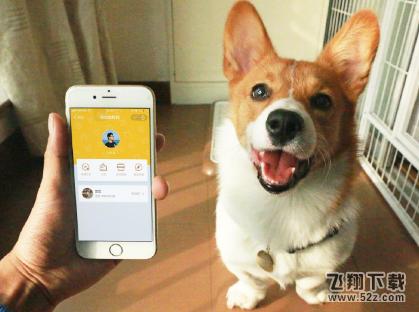 支付宝app宠物码申请方法教程_52z.com