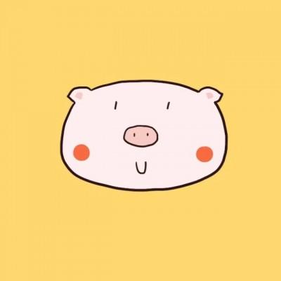 2019微信卡通猪头像呆萌 可