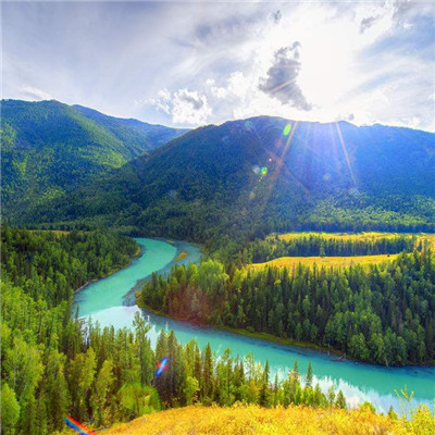 微信最吉利的好看头像风景大树 大树头像图片风景吉利好看_52z.com