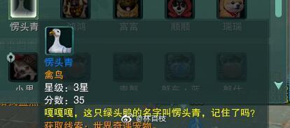 剑网3奇遇宠物愣头青获取攻略_52z.com