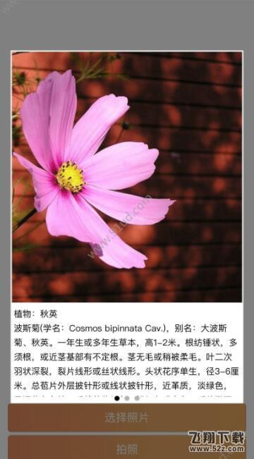 AI识图君_52z.com