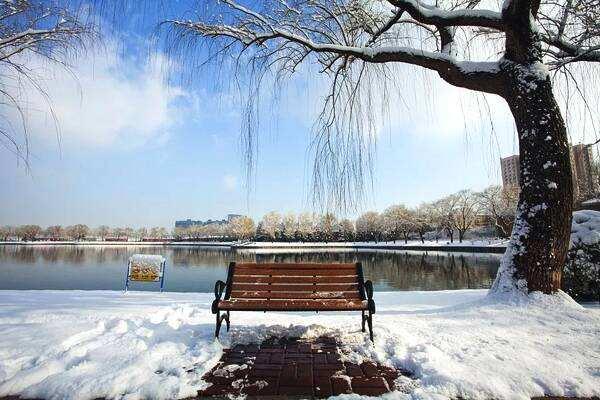 今冬冷冬概率为零是怎么回事 今冬冷冬概率为零是真的吗_52z.com