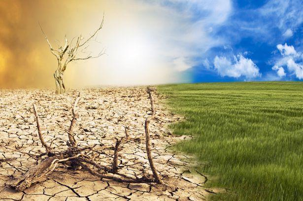 警告全球气候危机是怎么回事 警告全球气候危机是什么情况_52z.com