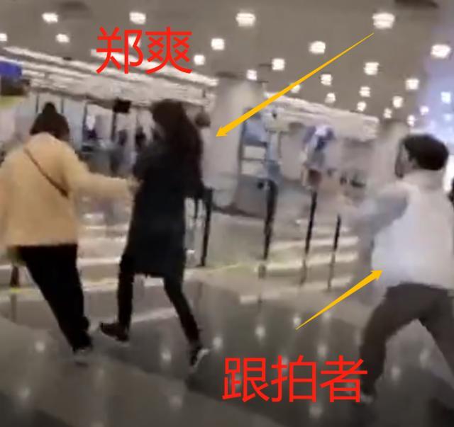 郑爽机场被追着跑是怎么回事 郑爽机场被追着跑是什么情况