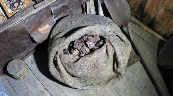 南极一百年前红洋葱是怎么回事 南极一百年前红洋葱是什么情况_52z.com