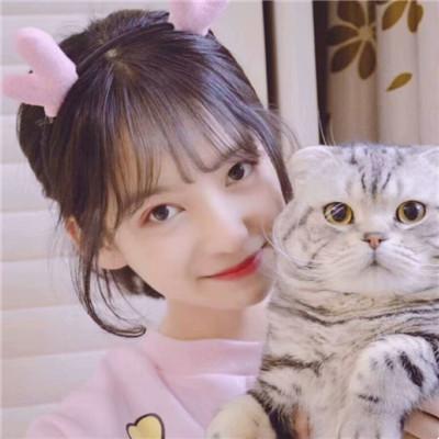 女生和猫狗在一起的头像2019 抱动物的女生头像青春可爱2019