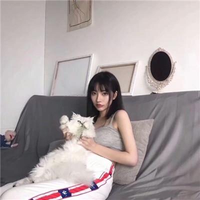 女生抱着猫猫爱心满满头像 抱着猫咪的女生头像可爱清新_52z.com