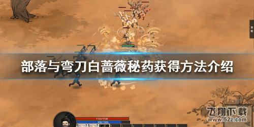 部落与弯刀白蔷薇秘药获取攻略_52z.com