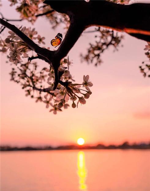 日落黄昏唯美图片大全 朋友圈黄昏图片高清无水印