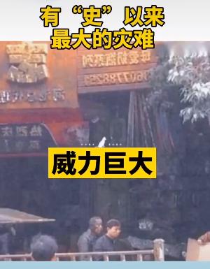 """抖音""""粪车爆炸50米""""是什么梗?_52z.com"""