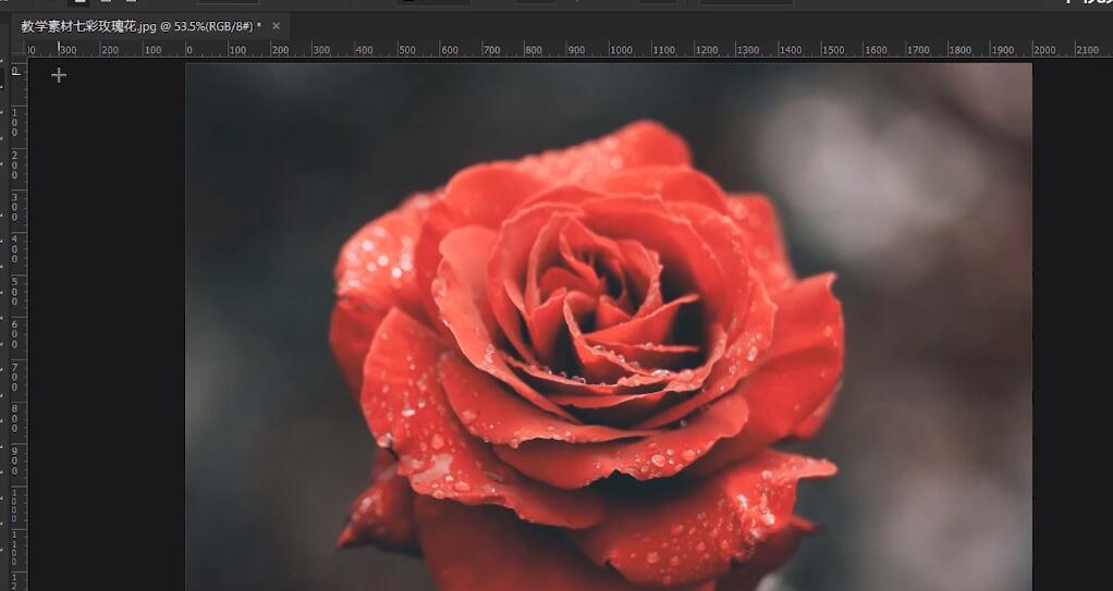 PS教学视频:七彩玫瑰调色教程,女朋友要啥颜色玫瑰就给她啥颜色!