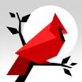 Cardinal Land拼图 V1.3.1 安卓版