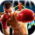 拳王争霸赛 V1.0 苹果版
