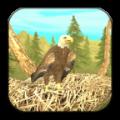 真实老鹰模拟器 V1.0 安卓版