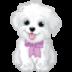 探索动物的叫声 V1.0.0.23 安卓版