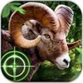 荒野猎手无限金币版 V1.0.6 破解版