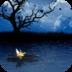 月下泛舟-梦象动态壁纸 V1.2.5 安卓版