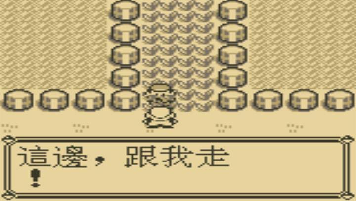 口袋妖怪 蓝中文版