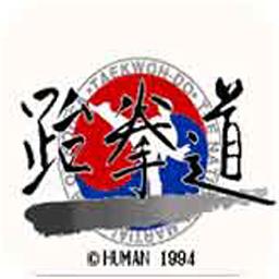 跆拳道 汉化版