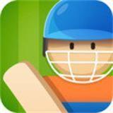 板球聚会 V1.0 安卓版